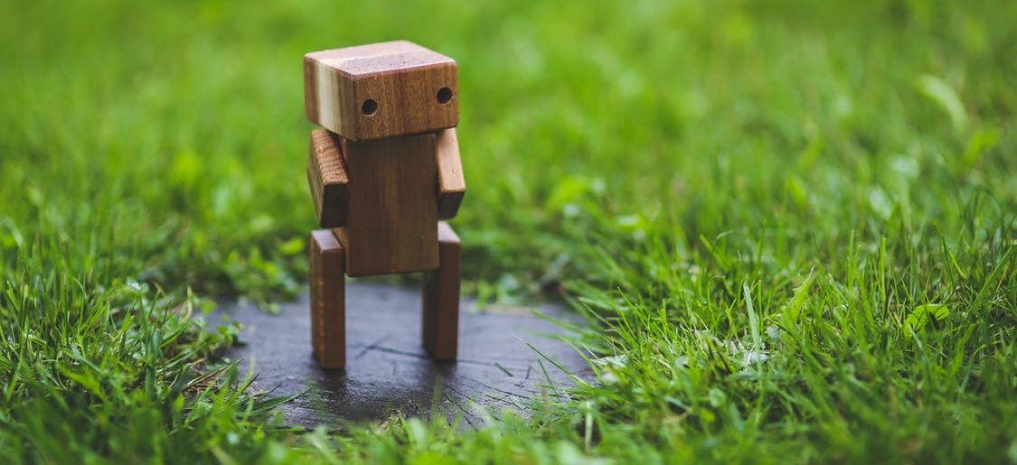 Trust in Robots - Trusting Robots